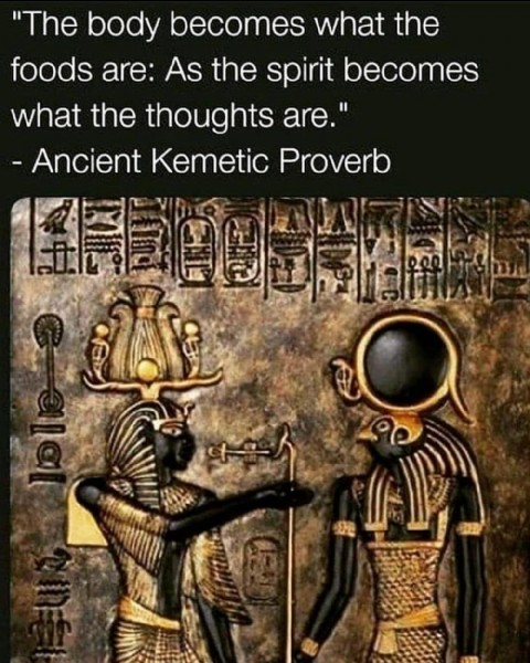 """Photo by Jan Edwards-Niles on June 19, 2021. May be an image of text that says '""""The body becomes what the foods are: As the spirit becomes what the thoughts are."""" -Ancient Kemetic Proverb A'."""