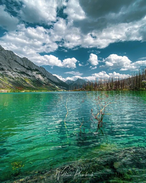 Photo by Will Plambeck on June 05, 2021. May be an image of lake and nature.