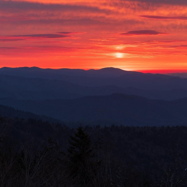 Photo by Sumit Bhatt in The Great Smoky Mountains. May be an image of mountain, nature, sky, tree and twilight.
