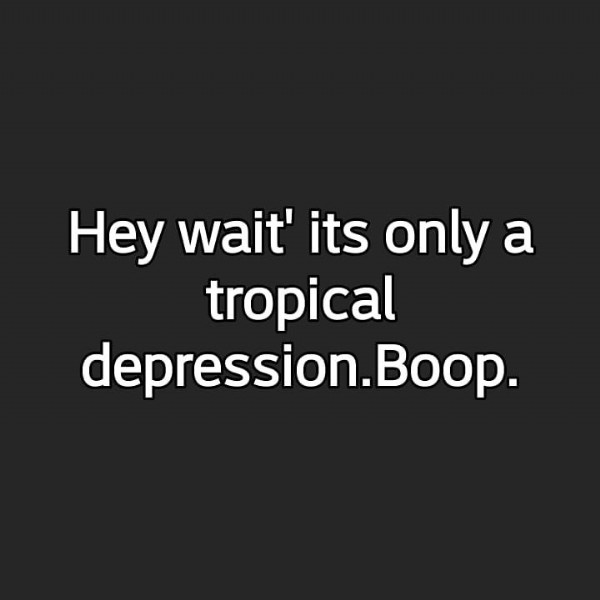 Photo by Poet on June 18, 2021. May be an image of text that says 'Hey wait' its only a tropical depression.Boop.'.