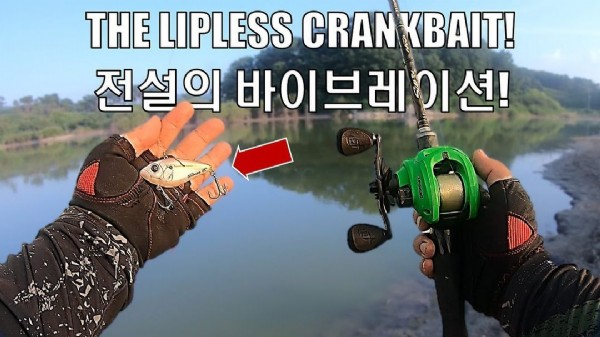 Photo by Philip An on August 01, 2021. May be an image of text that says 'THE LIPLESS CRANKBAIT! 전설의 바이브레이션! 이션!'.