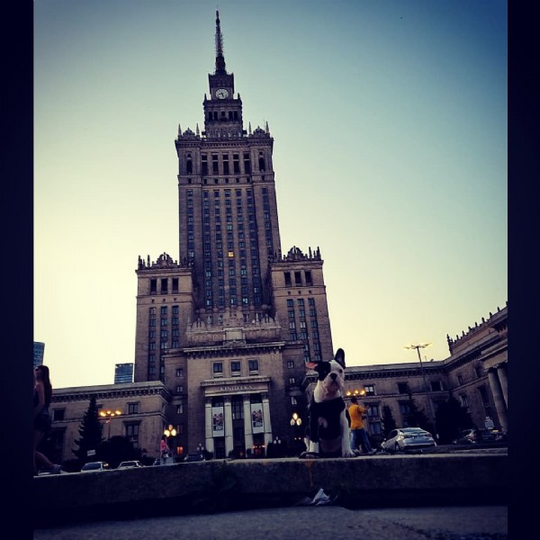 Photo by @milka_buldogfrancuski on July 31, 2021. May be an image of outdoors and monument.