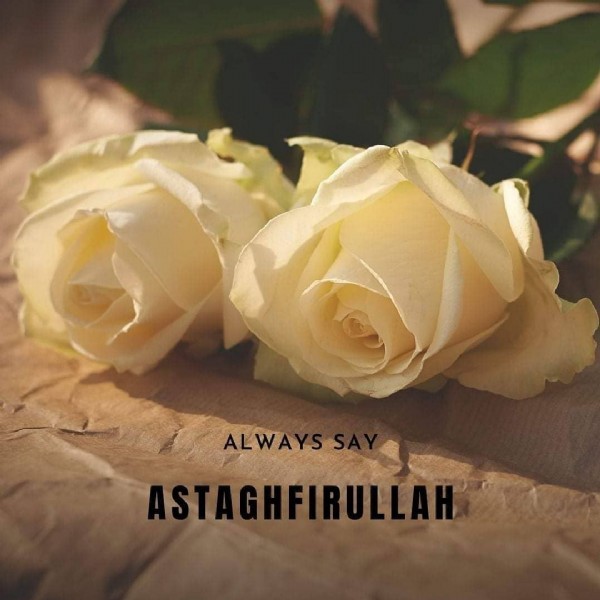 Photo by حدیث و ترجمہ on July 30, 2021. May be an image of rose and text that says 'ALWAYSS ASTAGHFIRULLAH'.