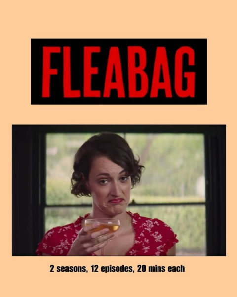 Photo by S&D_film_reviews on June 23, 2021. May be an image of 1 person and text that says 'FLEABAG 2 seasons, 12 episodes, 20 mins each'.