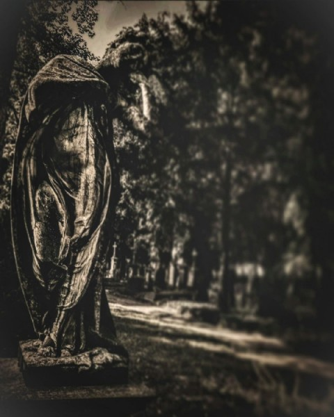 Photo by Fiore,Della,Morte on August 01, 2021. May be a black-and-white image of tree, monument and outdoors.