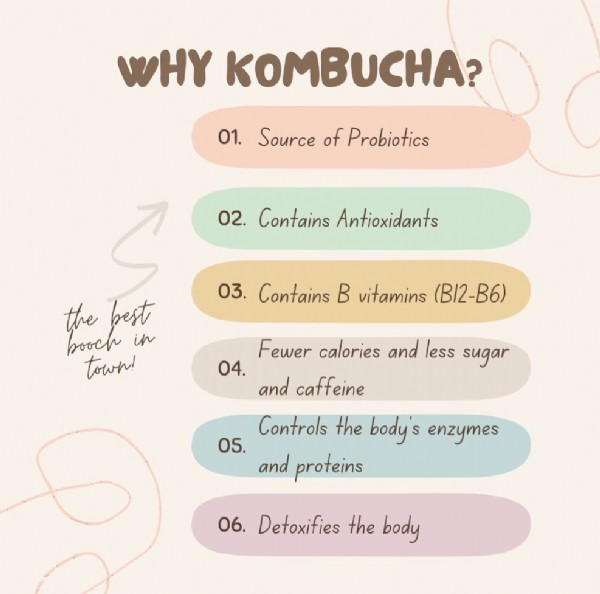Photo by bluegrass kombucha on June 09, 2021. May be an image of text that says 'WHY KOMBUCHA? 01. Source of Probiotics 02. Contains Antioxidants 03. Contains B vitamins (B12-B6) the booch in best town! Fewer calories and less sugar 04. and caffeine Controls the body' enzymes 05. and proteins 06. Detoxifies the body'.