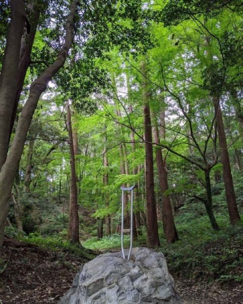 Photo by 桜フーカ on June 18, 2021. May be an image of nature and tree.