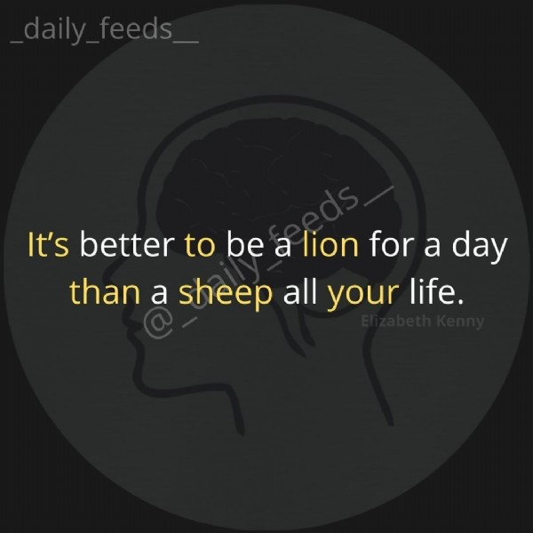 Photo by Daily Feeds-daily quotes on June 22, 2021. May be an image of text that says 'It's better to be a lion for a day than a sheep all your life.'.