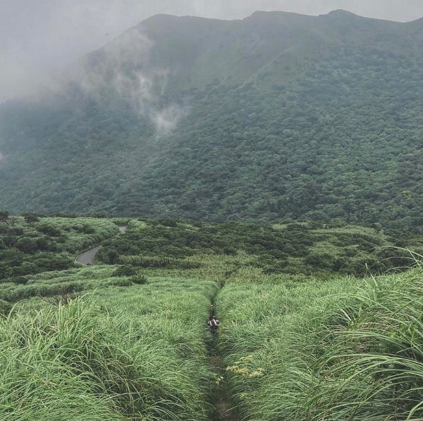 Photo by Trails of Taiwan () in 大屯山 with @inesyeh, and @trails_of_taiwan. May be an image of nature and mountain.