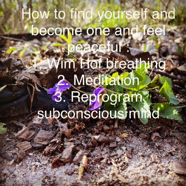 Photo by Manny on June 12, 2021. May be an image of flower, outdoors and text that says 'How to find yourself and become one and feel peaceful Vim Hof breathing Meditation 3. Reprogram subconscious'mind'.