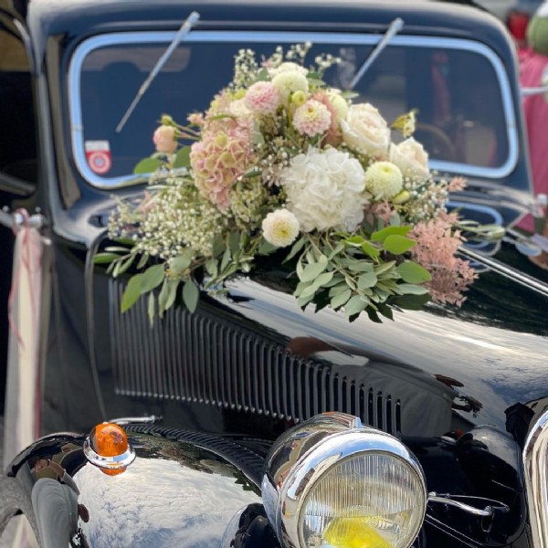 Photo by SOLO Steindl  on September 12, 2021. May be an image of car, flower and outdoors.