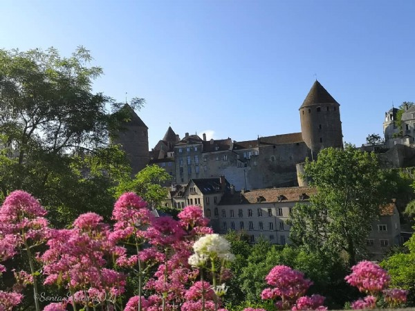 Photo by Mildred/Hlìf in Semur-en-Auxois. May be an image of flower, nature and castle.