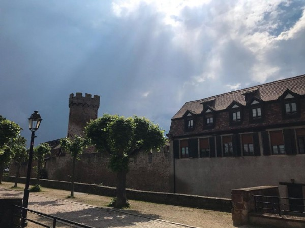 Photo by Petit Coucou D'Alsace on June 17, 2021. May be an image of brick wall, tree and sky.