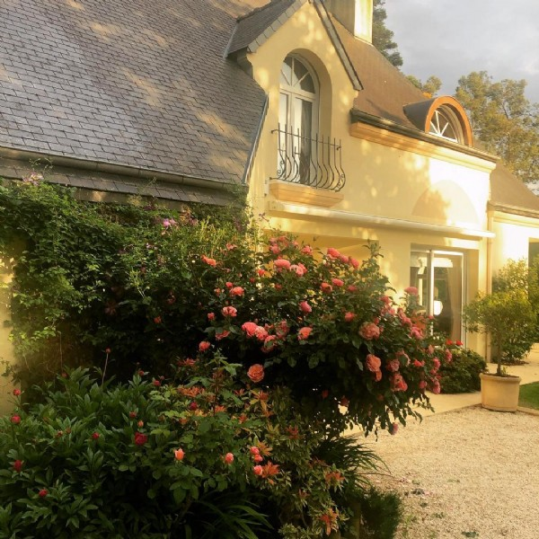 Photo by Chambres La guignardais in Lamballe. May be an image of outdoors and tree.
