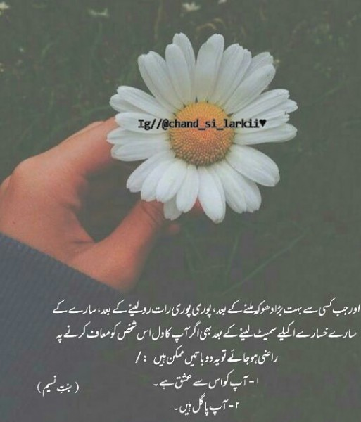 Photo by Chand Si Larkii in Like • Comment • Follow • Share. May be an image of one or more people, flower and text.