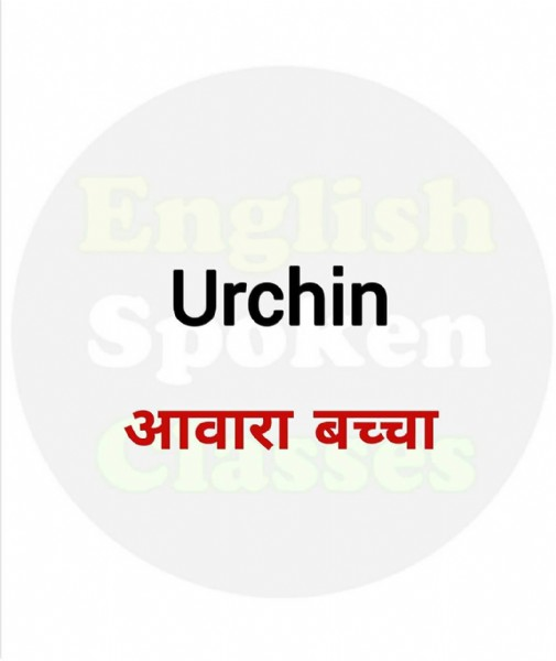 Photo by English Spoken Classes on June 07, 2021. May be an image of text that says 'English suchinn D आवारा बच्चा'.