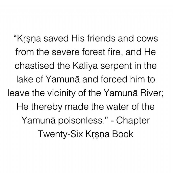 """Photo by Kṛṣṇa Book on June 04, 2021. May be an image of text that says '""""Krşna saved His friends and cows from the severe forest fire and HHe chastised the Kaliya serpent in the lake of Yamunã and forceo him to leave the vicinity of the Yamunã River He thereby made the water of the Yamunã poisonless."""" Chapter Twenty-Six Krşna Book'."""