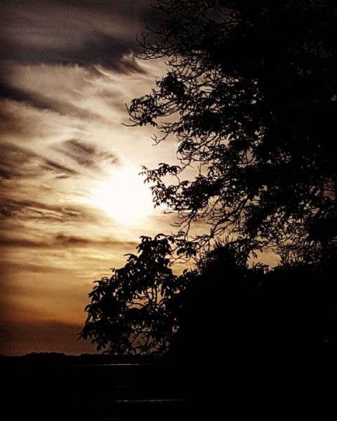 Photo by Jana  in Humenné. May be an image of twilight, sky, nature and tree.