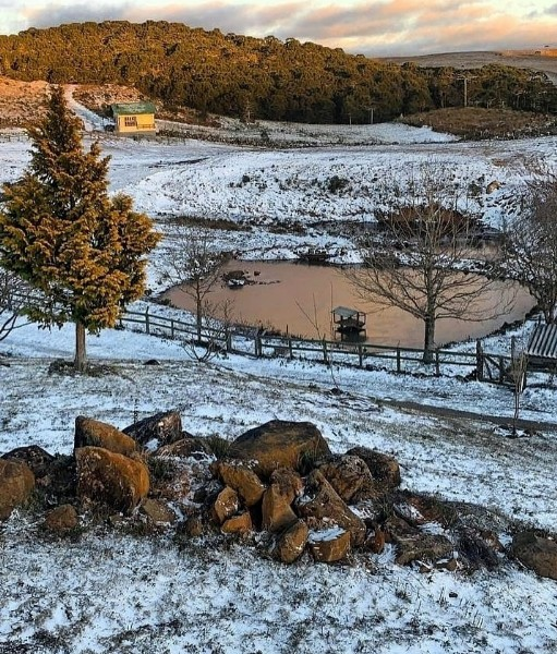 Photo by Alfa Trekking in Hotel Fazenda Rota Dos Cânions with @rotadoscanions. May be an image of nature, snow and tree.