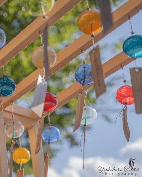 Photo by ただゆきひろ on July 29, 2021. May be an image of wind chime.