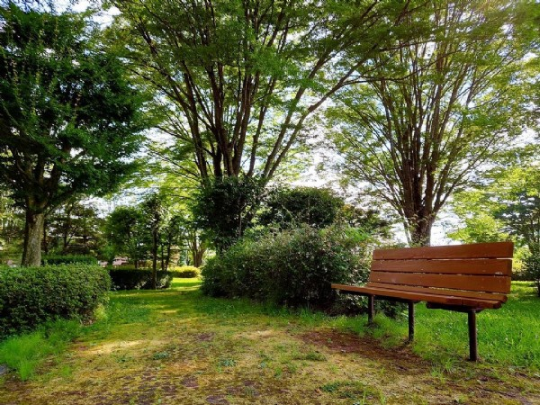 Photo by FXトレーダー/YOSHI on July 31, 2021. May be an image of nature, grass and tree.