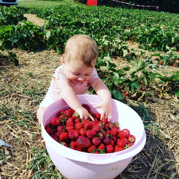 Photo shared by Handmade Schnullerketten on June 22, 2021 tagging @bloggerdreamz. May be an image of one or more people, strawberry and outdoors.
