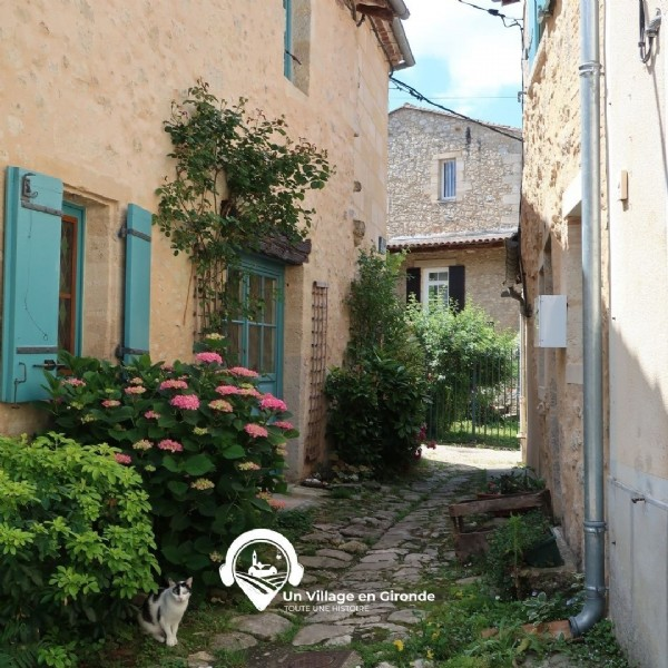 Photo by Un Village en Gironde on June 19, 2021. May be an image of outdoors, tree and text.