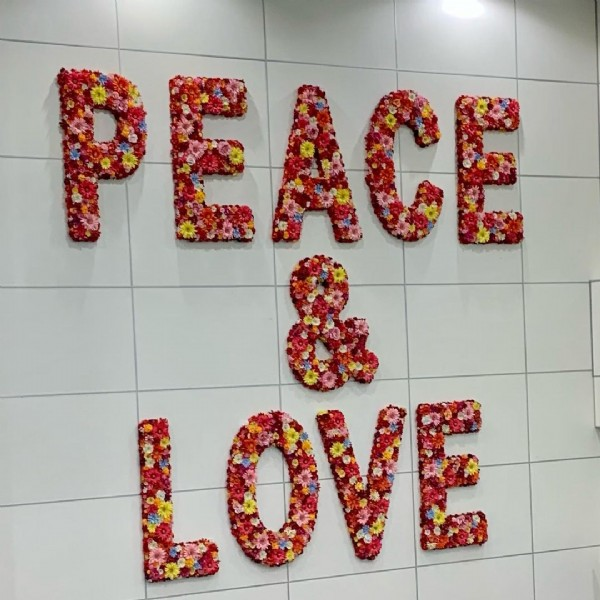 Photo by kcl1313 on February 14, 2021. May be an image of indoor and text that says 'PE PEACE LOVE'.